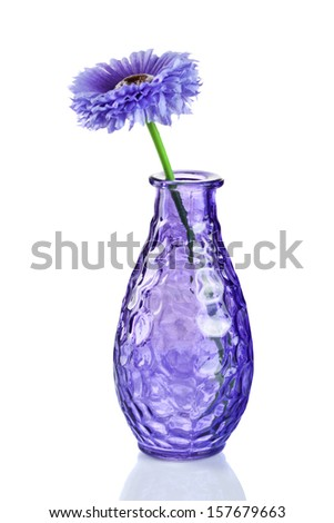 Blue flower in vase isolated on white - stock photo