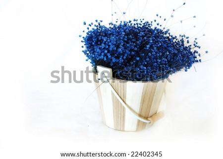 blue flowers in wooden flowerpot - stock photo