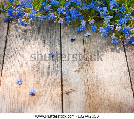 blue flowers on wooden background - stock photo