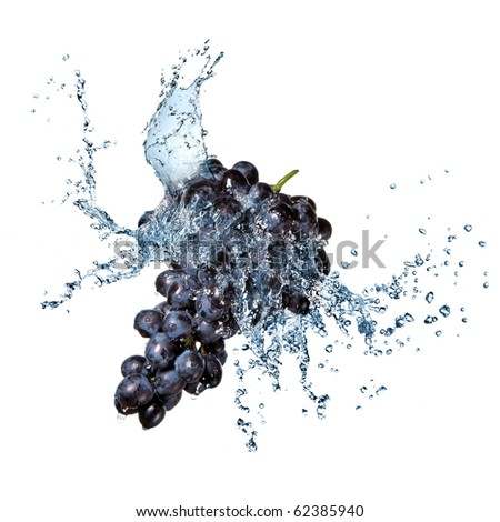 blue grape with water splash isolated on white - stock photo