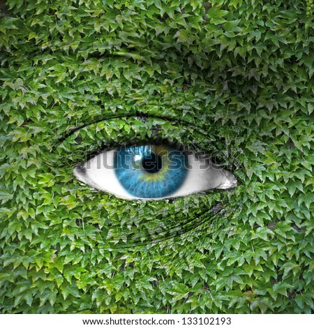 Blue human eye and ivy leaves - Green concept - stock photo