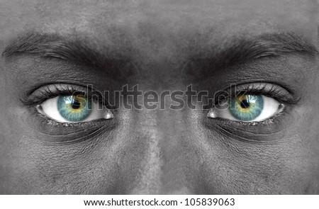 Blue human eyes closeup - stock photo