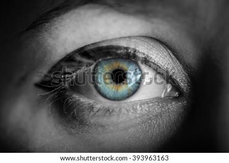 Blue iris eye over black and white. Macro shot. - stock photo