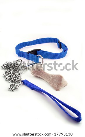 blue masculine dog leash chain and dog buiscuit - stock photo