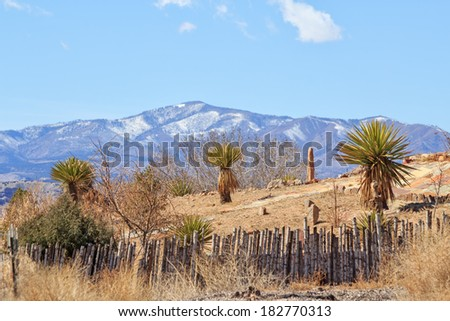 Blue mountains behind a patch of rocky land dotted with shrubs - stock photo