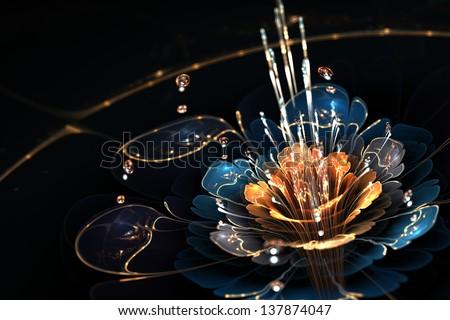 blue - orange flower with droplets of water and golden details on black background, illustration - stock photo