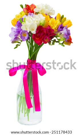blue, pink  and yellow freesia   flowers in vase   isolated on white background - stock photo