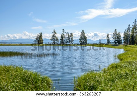 Blue Pond - A quiet small pond, next to Yellowstone Lake, at Gull Point, Yellowstone National Park, Wyoming, USA. - stock photo