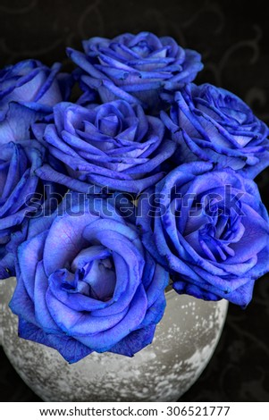 Blue roses in a vase on the table - stock photo