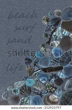 """Blue seashells on a beach with the words """"beach, surf, sand, sea, life"""" in the background. - stock photo"""