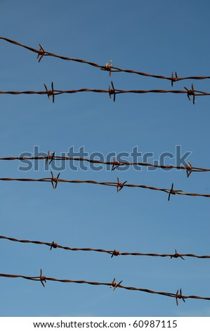 blue sky and barbed wire - stock photo