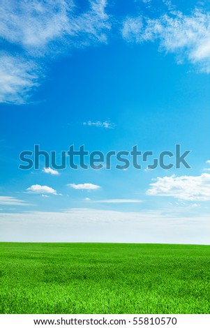 blue sky and field of fresh green grass - stock photo