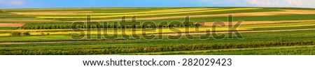 Blue sky over plowed fields panorama - stock photo
