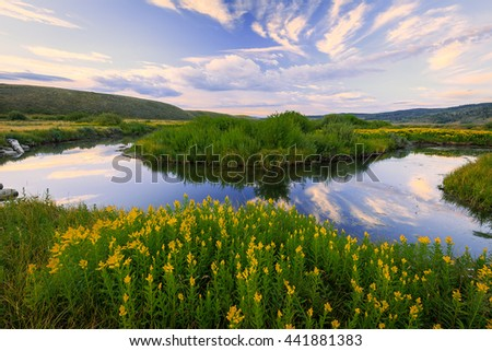 Blue sky reflection with wildflowers on a bend in a river, Utah. - stock photo