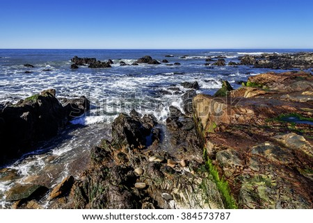 Blue sky, tidal pools, green algae, rock-boring mollusk holes, & unusual geological formations at low tide, along the rugged Big Sur coastline, near Monterey, CA. on the California Central Coast. - stock photo