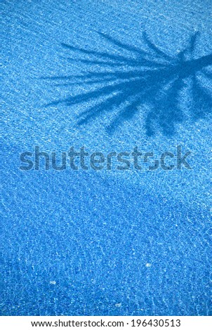 Blue water with the shadow of palm trees - stock photo
