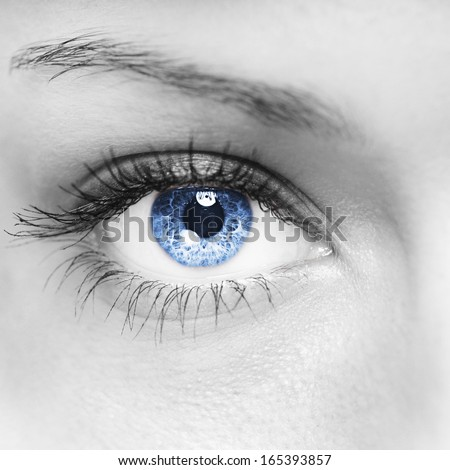 Blue woman eye macro shot - stock photo