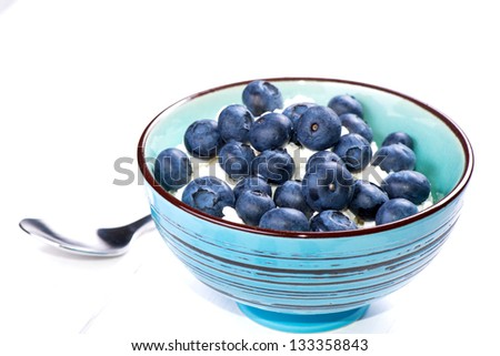 Blueberries and ricotta cheese in a bowl on white wooden table - stock photo