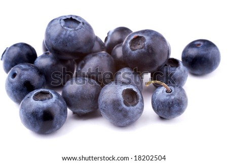 blueberries isolated on a white - stock photo