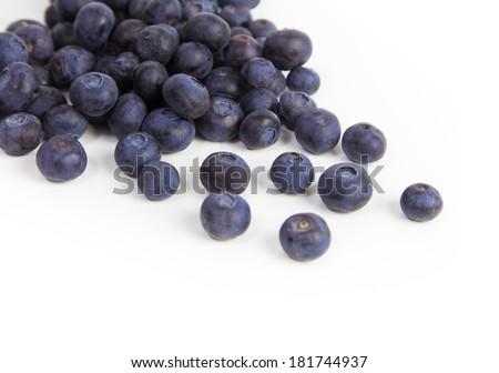Blueberries on white background - stock photo