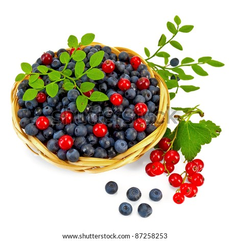 Blueberries with red currants in a wicker basket, a sprig of blueberries and red currants with green leaves isolated on white background - stock photo