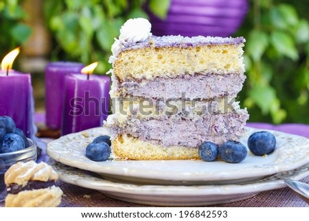 Blueberry and coconut layer cake - stock photo