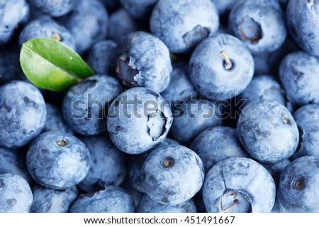 Blueberry background - stock photo