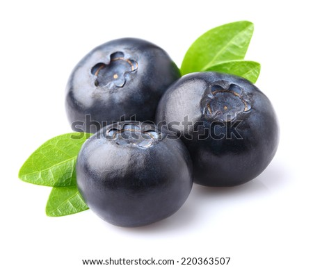 Blueberry in closeup - stock photo