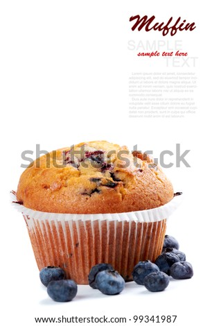 Blueberry Muffin isolated on a white background - stock photo