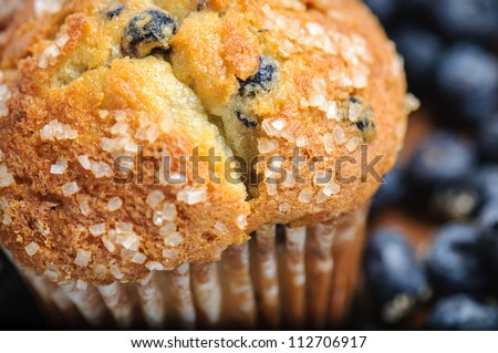 Blueberry Muffin with Blueberries in Background - stock photo