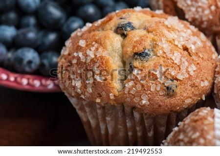 Blueberry Muffins - stock photo