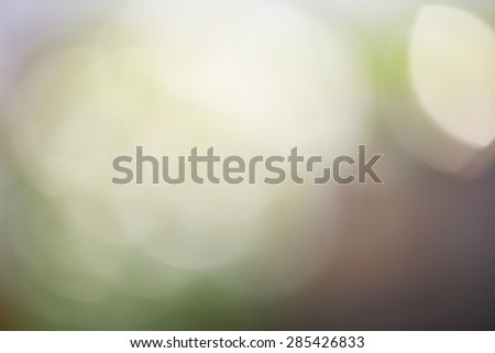 blur and bright background. - stock photo