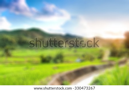 Blur background of agriculture farm in morning time - stock photo