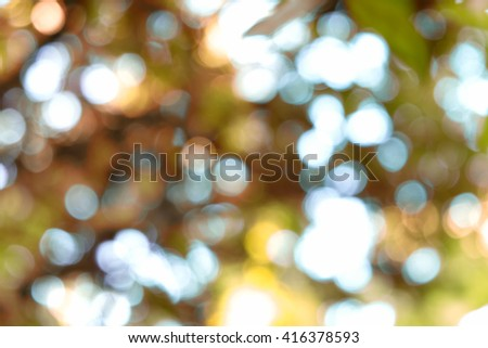 blur bokeh of lights comes through trees and leaves (autumn season) - stock photo