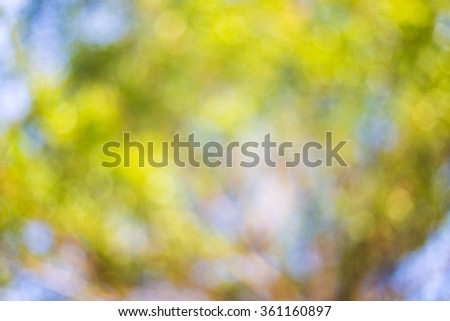 Blur light natural green tree with bokeh abstract background. - stock photo