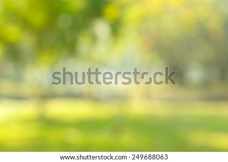 blur natural and light background in the park. - stock photo