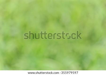 blur nature backgroud  and bokeh - stock photo