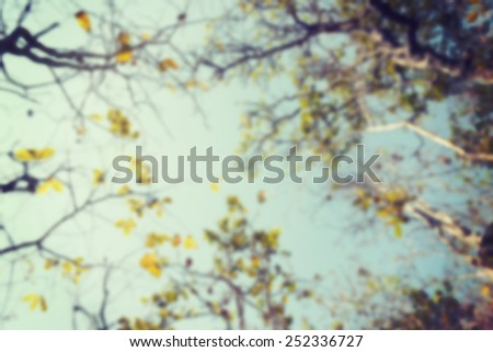 Blur Nature with filter effect retro vintage style - stock photo