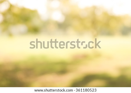 Blur park with nature green - stock photo