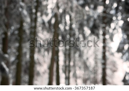 blurred background forest snow winter with snow on the branches - stock photo
