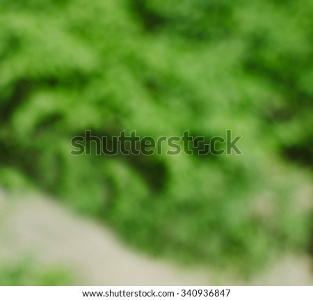 Blurred defocused background photo of the grass in garden  - stock photo