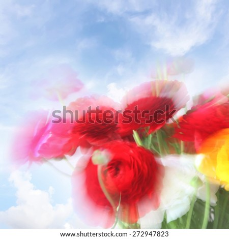 Blurred flowers background. Natural motion blurred buttercup flowers bouquet on blue sky background  - stock photo