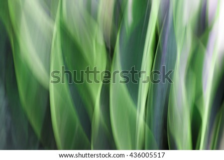 Blurred green lights abstract background. - stock photo