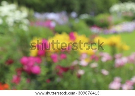 Blurred image of a bright and colorful flowers on a background of green grass - stock photo