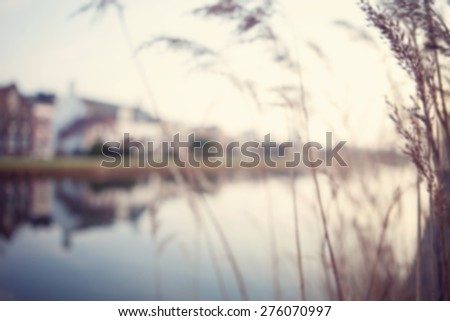 Blurred image of the city. Amsterdam canal view through the reeds with a reflections of houses and sky on the water. - stock photo