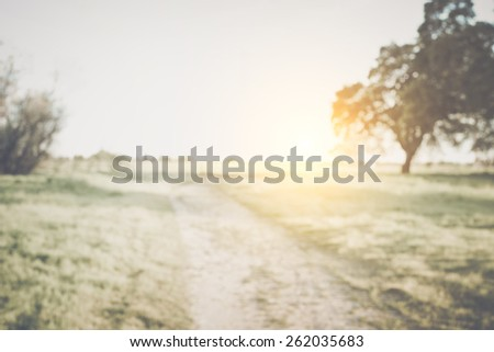 Blurred Nature Background with Instagram Style Filter - stock photo