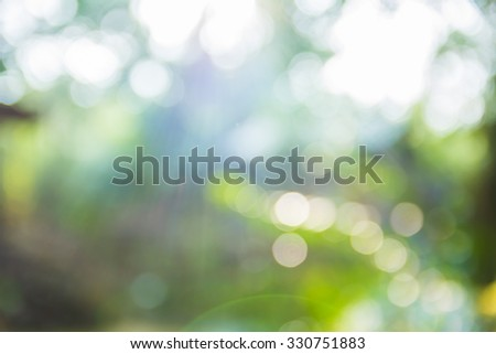 Blurred nature backgrounds and bokeh - stock photo