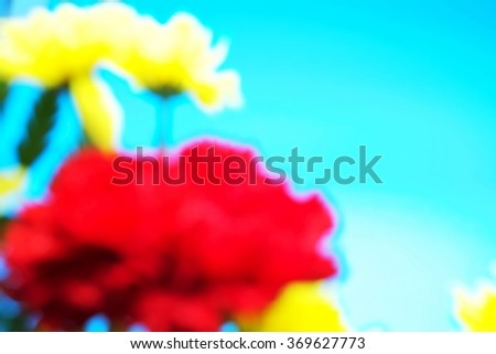 Blurred of red carnations and yellow flowers with blue background. Focus on yellow flowers. Space for texts. - stock photo