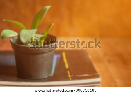 blurred of small  tree potted and magazine on wooden table,vintage color tone. - stock photo