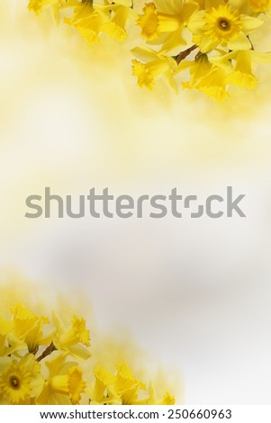 blurred spring background for Your text - stock photo